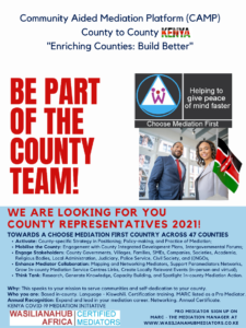 WE ARE LOOKING FOR YOU - COUNTY REPRESENTATIVES 2021!